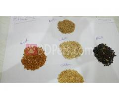 Millets available